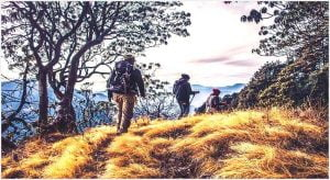 Hiking for Beginners – Essential Tips and Tricks
