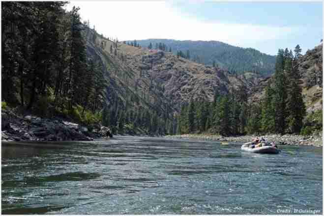 Kayaking in Salmon River